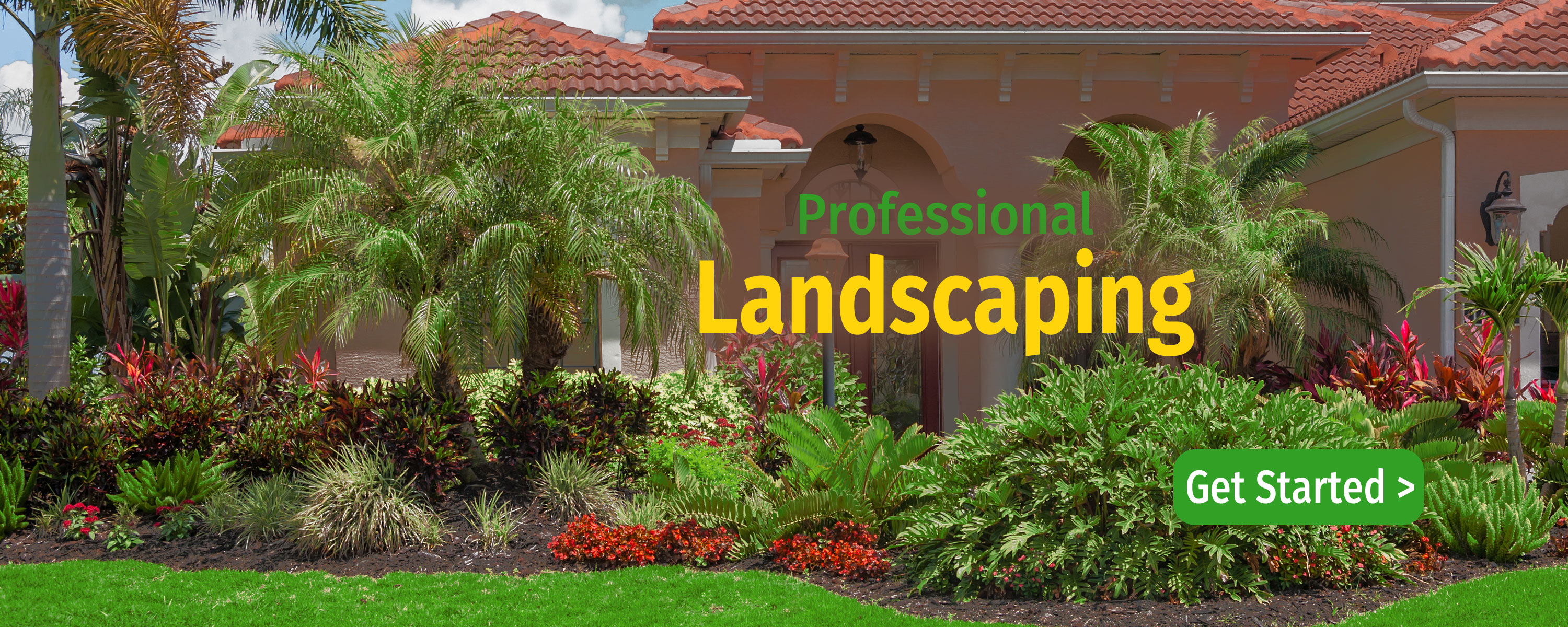 landscaping tree care service pest control tampa fl all