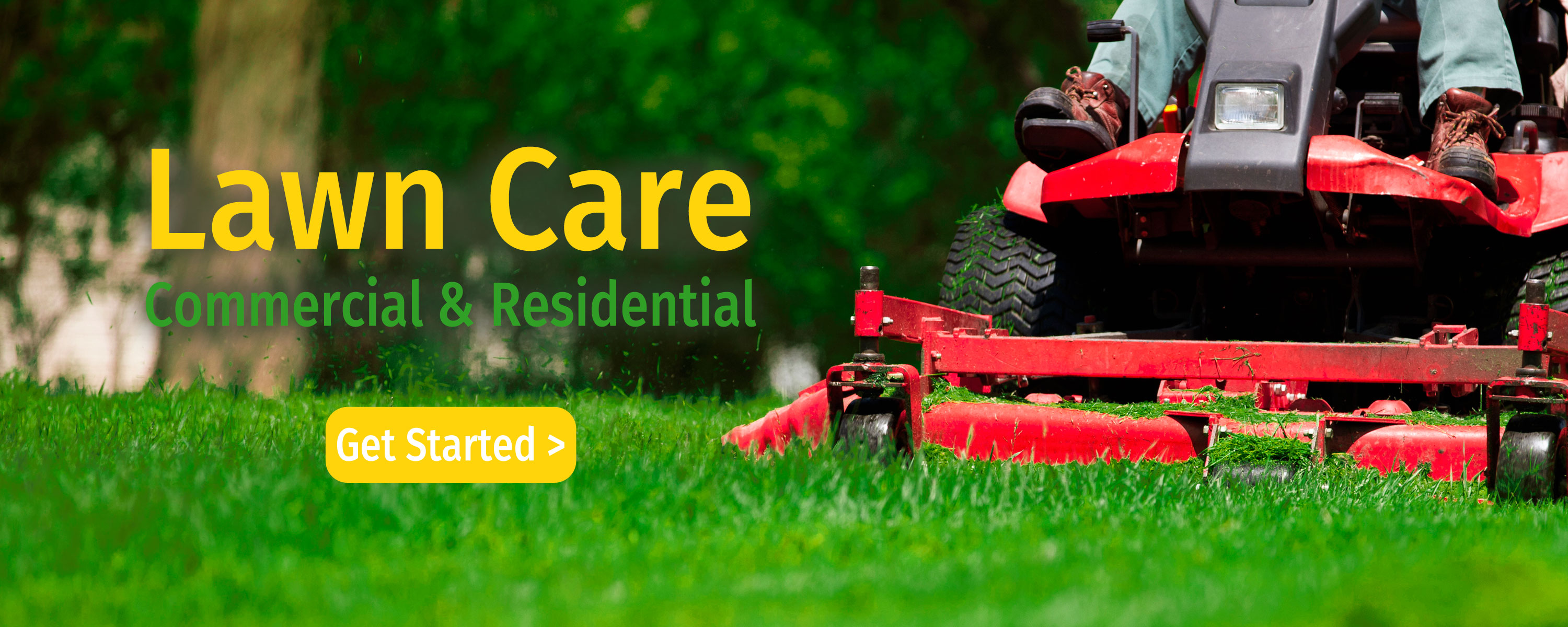 Landscaping tree care service pest control tampa fl for Landscaping services
